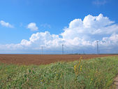 Blue sky and summer field with wind-turbines — Stock Photo