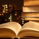 Evening reading — Stock Photo #3161277