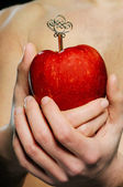 Red apple in man hands — Stock Photo