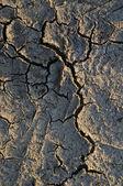 Cracked texture 2 — Stock Photo