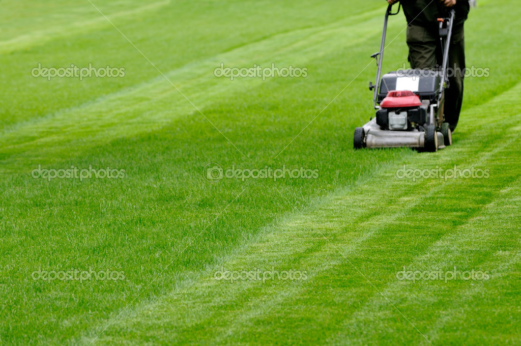 Person cutting grass with mower  Stok fotoraf #3827383