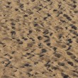 Stock Photo: Beach sand