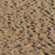Beach sand — Stock Photo
