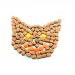 Cat head shape made of cat food — Stock Photo #3809661