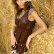 Young attractive woman in a haystack — Stock Photo