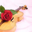 Stock Photo: Viola, rose, and music sheet