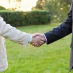Mens handshake — Stock Photo