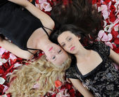 Beautiful women in rose petals — Stock Photo
