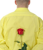 Man in a yellow shirt holding a red rose — Stock Photo