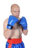 Portrait of an experienced boxer — Stock Photo