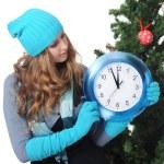 Vánoční čas — Stock fotografie #4191617