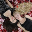 Stock Photo: Beautiful women in rose petals