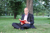 Man with laptop sitting near a tree — Stock Photo