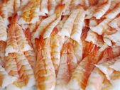Prawns - Lots of — Stock Photo
