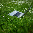 Notebook in a Meadow - natural — Stock Photo