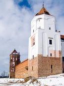 Belorus, fortress, battlement, tower — Stock Photo