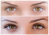 NATURAL AND FALSE EYELASHES BEFORE AND AFTER — 图库照片