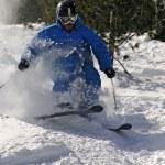 Freeride Skier in powder snow. — Stock Photo #3219868