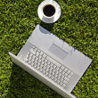 Computer and coffee on the grass - Stock Photo