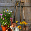 Garden shed with tools and pots - Stock Photo