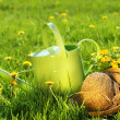 Watering can in the grass - Stock Photo
