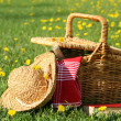 Basket and straw laying on the grass — Stok Fotoğraf #3245901