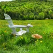 Relaxing on a summer chair in a field — Stock Photo