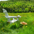 Relaxing on a summer chair in a field - Stock Photo
