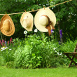 图库照片: Summer straw hats hanging on clothesline