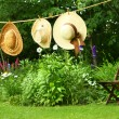 Summer straw hats hanging on clothesline - Stock Photo