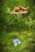 Little stuff teddy bear laying on stump — Stock Photo