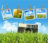 Grass with vintage camera and pictures — Stock Photo
