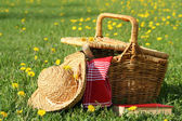 Basket and straw laying on the grass — Stok fotoğraf
