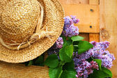 Freshly picked lilacs — Stock Photo
