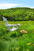 Relaxing on a summer chair in a field — Stockfoto