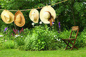Summer straw hats hanging on clothesline — Stock fotografie