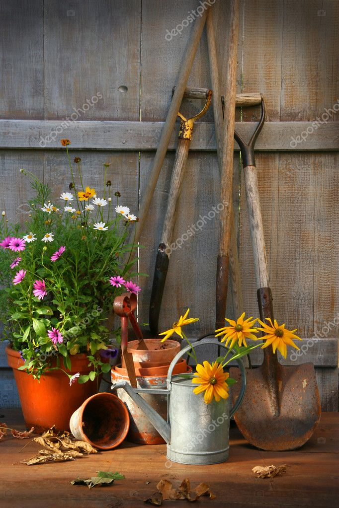 Garden shed with tools and flower pots    #3245854