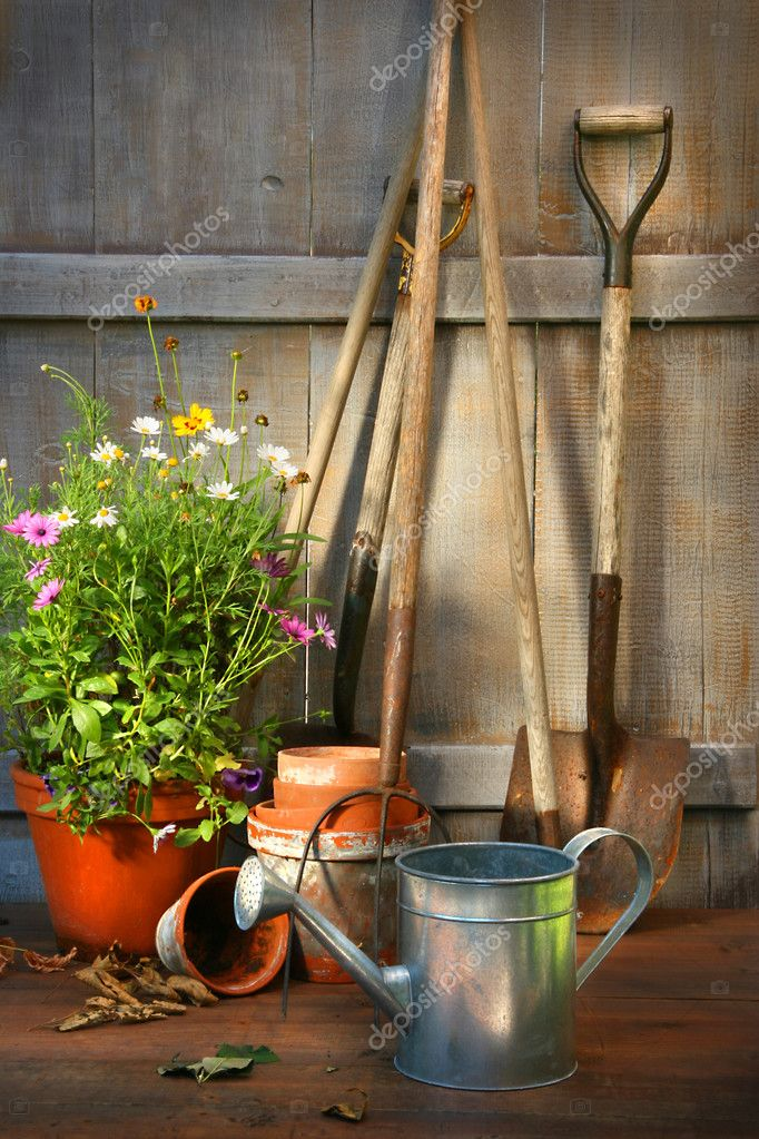Garden tools and a pot of summer flowers in garden shed — Stock Photo #3245857