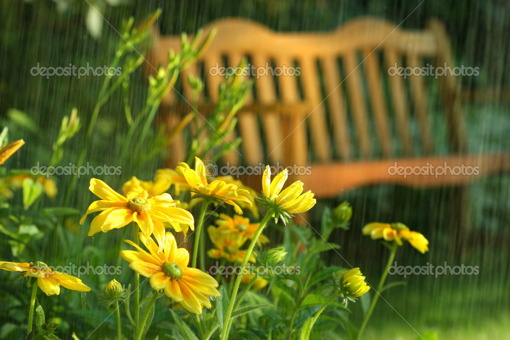 Summer showers in the late afternoon — Stock Photo #3245972