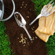 Assortment of garden tools on earth — Stock Photo