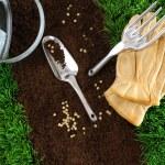 Assortment of garden tools on earth — Stock Photo