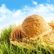 图库照片: Straw hat on grass