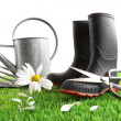 Boots with watering can and daisy in grass - Stock Photo