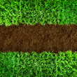 Green grass and earth Background - Stock Photo