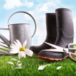 Boots with watering can and daisy in grass — Stok fotoğraf
