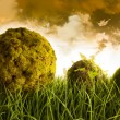 Moss covered balls laying in tall grass - Stock Photo