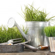 Garden tools and watering can with grass — Stock Photo