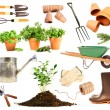 Variety of objects for spring planting on white — Stok fotoğraf