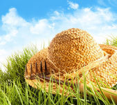 Straw hat on grass — Stok fotoğraf