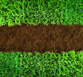 Groene gras en aarde achtergrond — Stockfoto